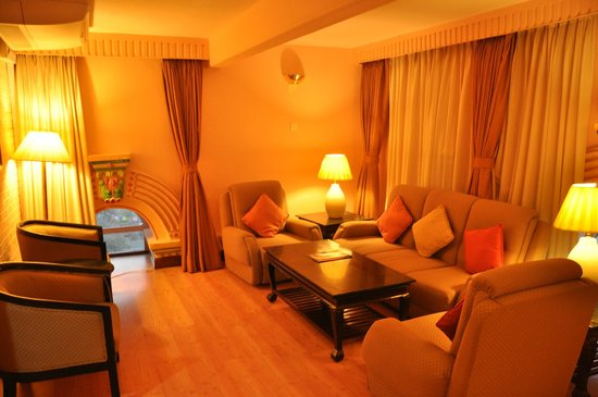 Hotel Shanker: Ruime woonkamer in de suite