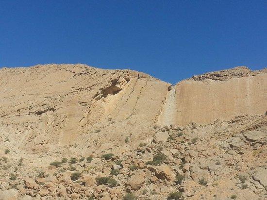 Wahiba Sands: Ancora colori che cambiano nel deserto