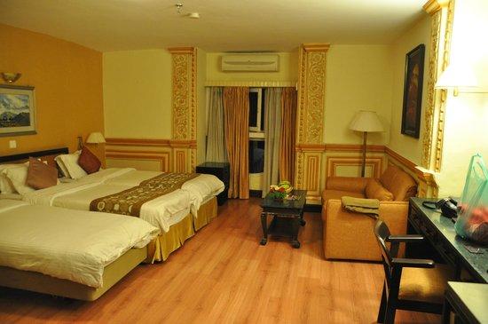Hotel Shanker: Ruime standaardkamer met extra bed