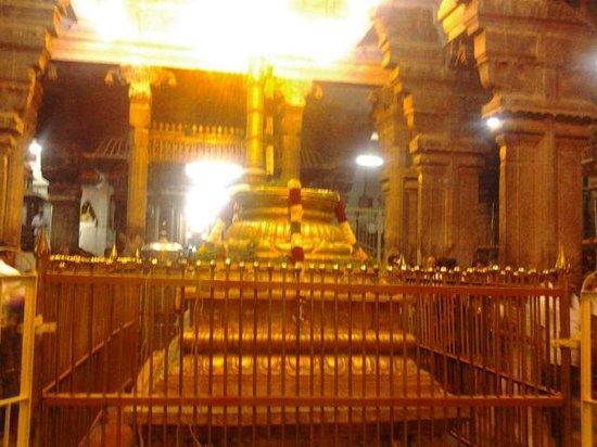 Sri Ranganathaswamy Temple: srirangam Temple-Muralitharan photo
