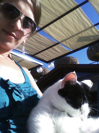 Hotel Letoon : neighborhood cat 1 - having had breakfast, jumped into my lap enjoying the morning sun :)