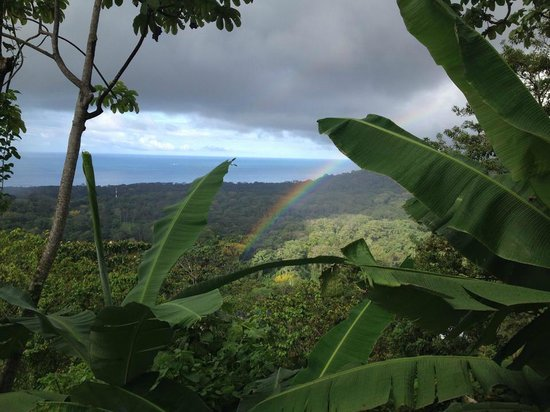 Vista Ballena Hotel: a rainbow over the jungle and ocean view