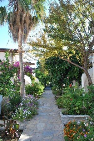 Hotel Letoon : gorgeous garden