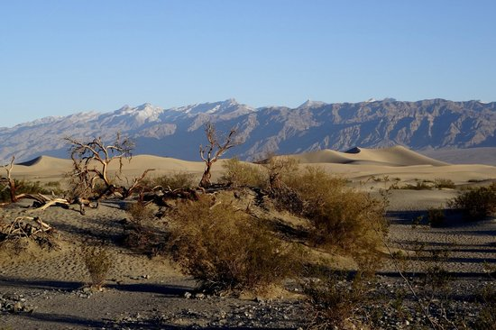 Mesquite Flat Sand Dunes: Mesquite Sand Dunes, Death Valley National Park, California