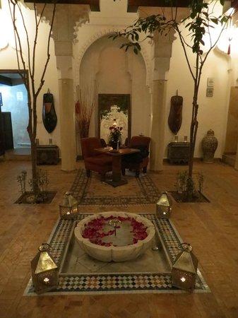 Riad Zolah: Salone