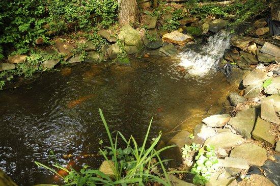 Sylvan Valley Lodge: The Glade Pond