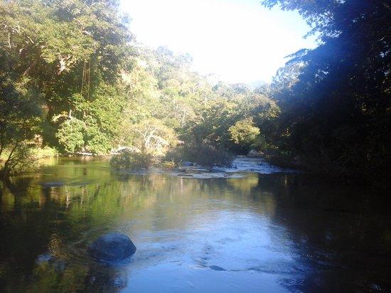 Vallarta Botanical Gardens: Rio cristalino