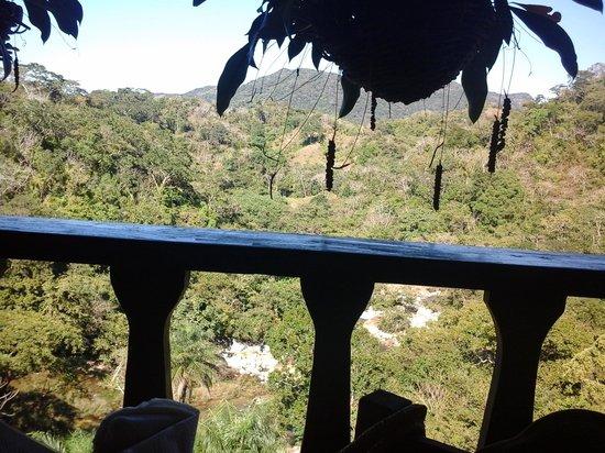 Vallarta Botanical Gardens: vista desde restaurant