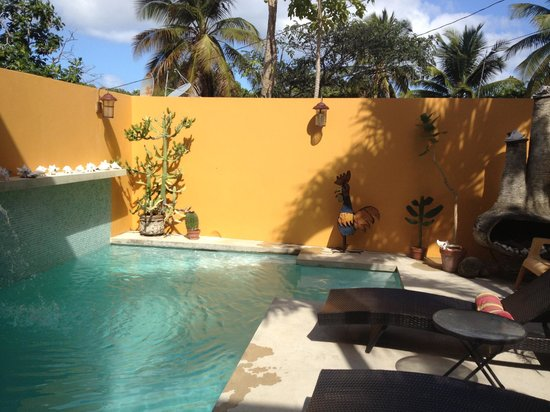 Casa de Amistad: Pool in the Courtyard