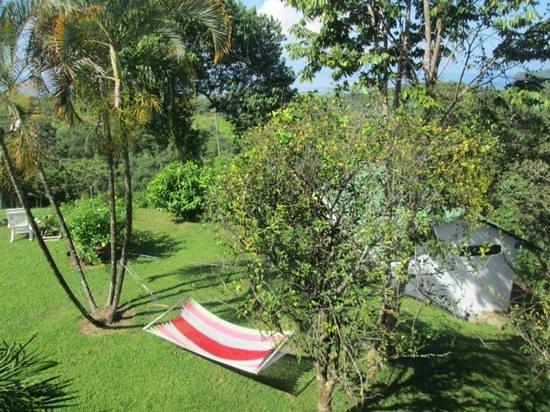 Hotel El Perezoso: lush garden