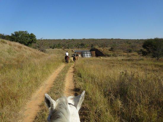 Horizon Horseback Adventures Lodge: Ausritt