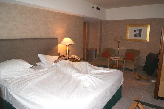 Sheraton Brussels Hotel: 27 Dicembre 2013 - 3 Gennaio 2014 - L'altra stanza