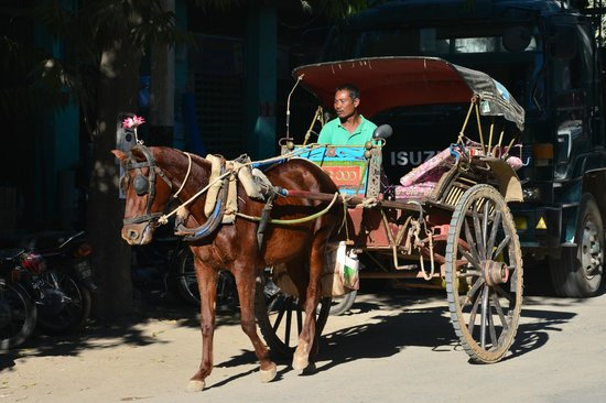 Bagan Hotel River View : ample horsecarts, and cars, available nearby...