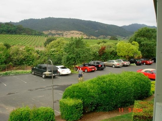 Vintage Inn: View of parking lot and vineyards beyond