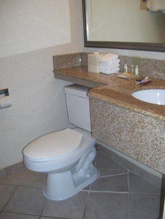 Holiday Inn National Airport / Crystal City: bathroom