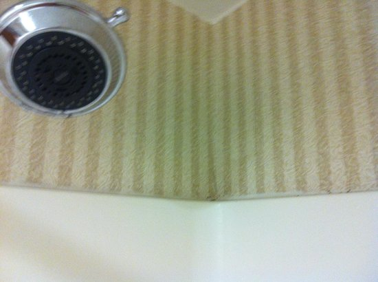 Best Western Plus Cedar Bluff Inn: shower/mold
