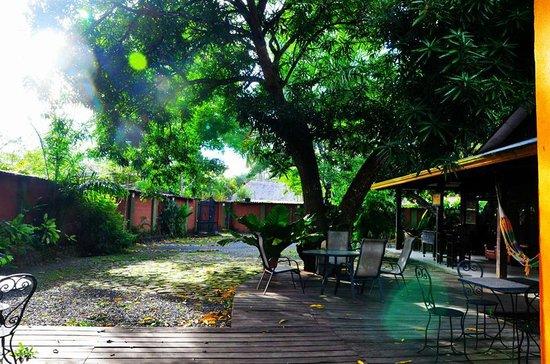 Jaco Inn: Garden