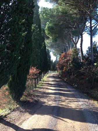 Villa Armena Relais: quelle beau chemin
