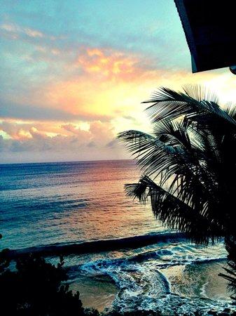Boxer Shack: The sunset