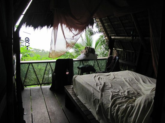 "Finca Exotica Ecolodge: The ""Mango"" cabin as seen from the door and part of the amazing view"