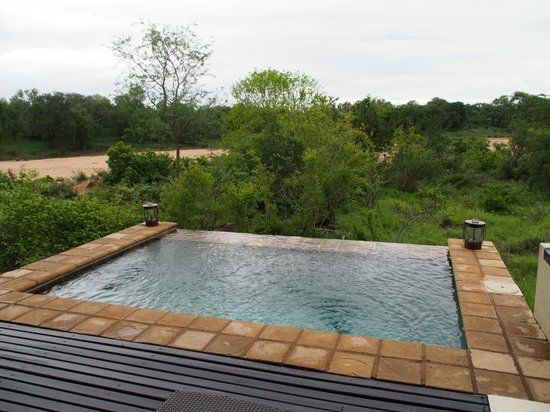 Lion Sands Ivory Lodge: pool view