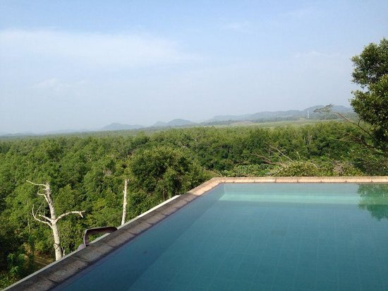 Mangrove Escapes: the view with the pool