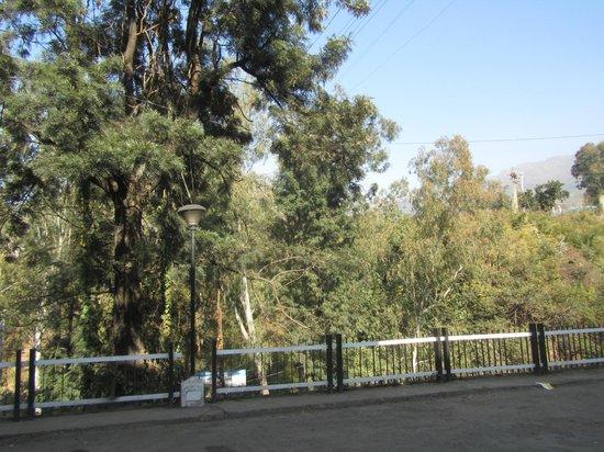 Hotel Shivalik: Hotel Ground