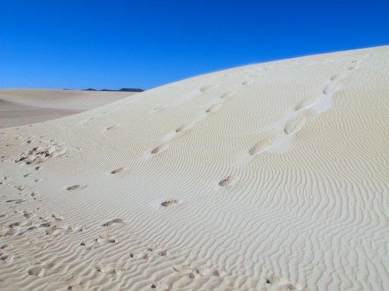 Sheraton Fuerteventura Beach, Golf & Spa Resort : Sand Dunes