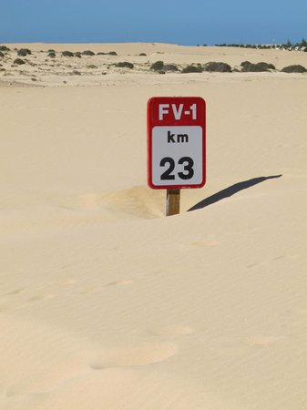 Sheraton Fuerteventura Beach, Golf & Spa Resort : Buried road sign