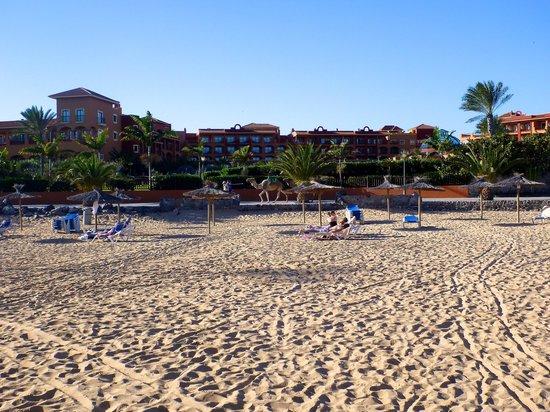 Sheraton Fuerteventura Beach, Golf & Spa Resort : Hotel beach - don't miss the $20 massages!