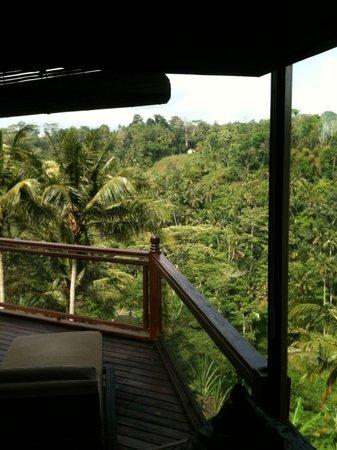 Kupu Kupu Barong Villas and Tree Spa: Вид с террасы