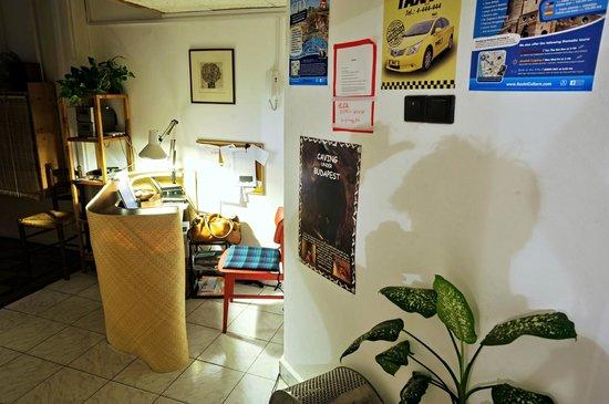 Zsófi's House Hostel : Reception