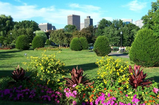 Boston Public Garden: Summer In Full Bloom