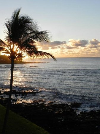 Kuhio Shores Condos : Eastern sunrise view from condo