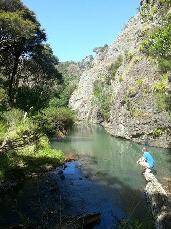 Whangaroa, Nouvelle-Zélande : Stream on Walk