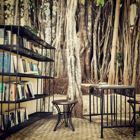The Banyan Soul : The library under the banyan tree.