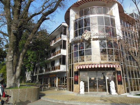 Primorie Spa & Wellness Hotel: чудесный вид