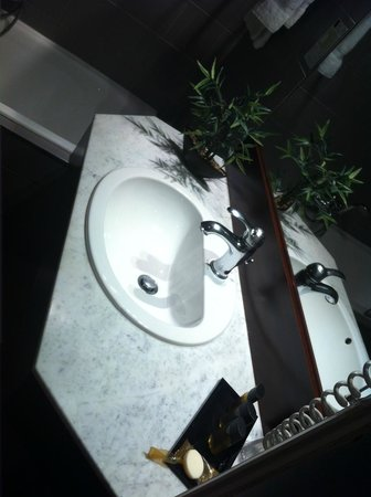 Hotel Le Roosevelt : Salle de bain chambre classique