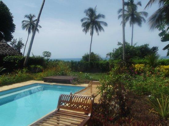 Zanzi Resort: Private pool with view from villa