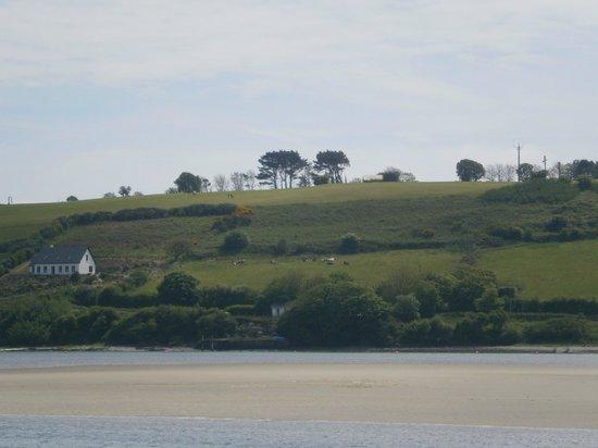 Inchydoney Beach: Vista dalla spiaggia