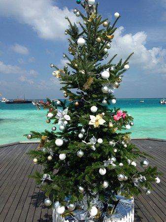 PER AQUUM Huvafen Fushi: Merry Christmas