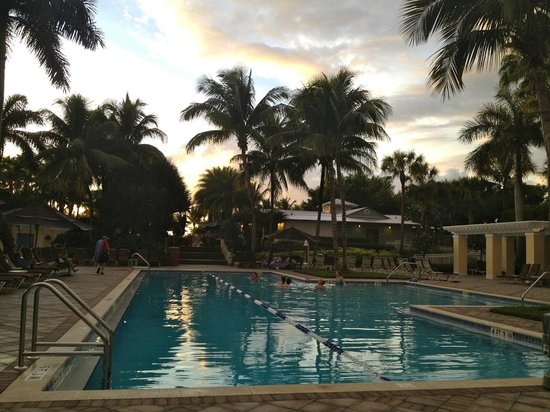 Hyatt Regency Coconut Point Resort and Spa : Adult pool