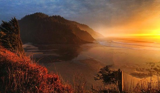 Heceta Head Lighthouse Bed and Breakfast: View of beach from B&B