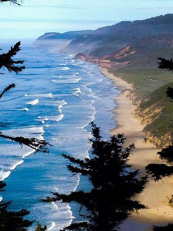 Heceta Head Lighthouse Bed and Breakfast: Beach to the north of B&B