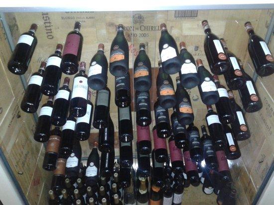 Koloma: Nuestra Bodega de vinos
