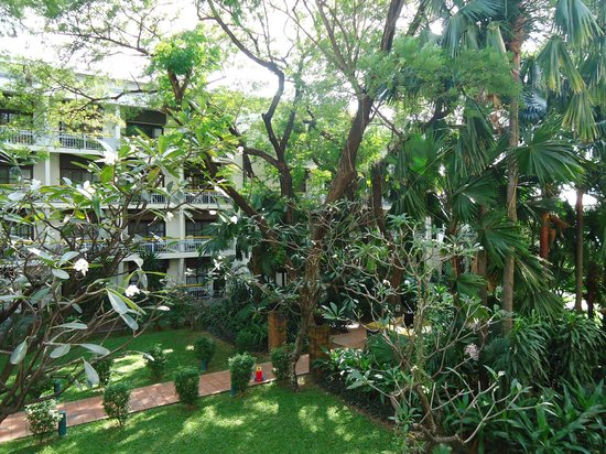 Embassy Place Apartments: View of the gardens