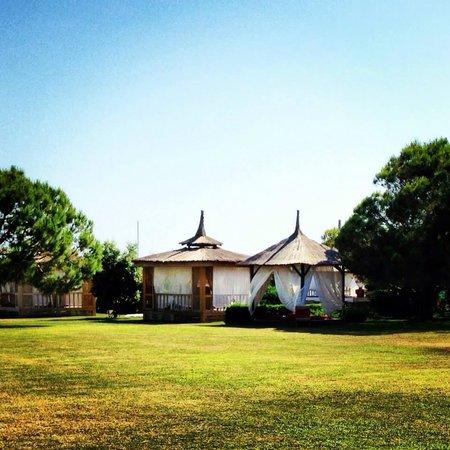 Blue Waters Club: Jardin de l'hôtel