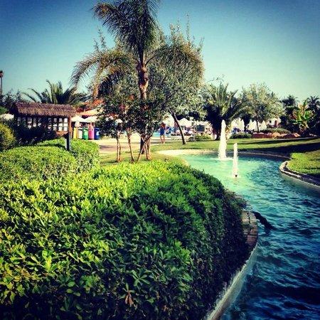 Blue Waters Club: Allée de l'hôtel menant a la piscine