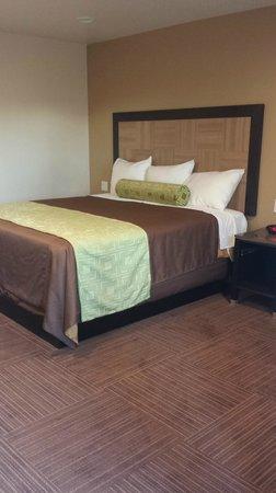 Best Western Plus Glendale: My Bed
