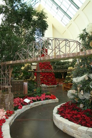 Lauritzen Gardens Omahau0027s Botanical Center: Christmas At Lauritzen Gardens